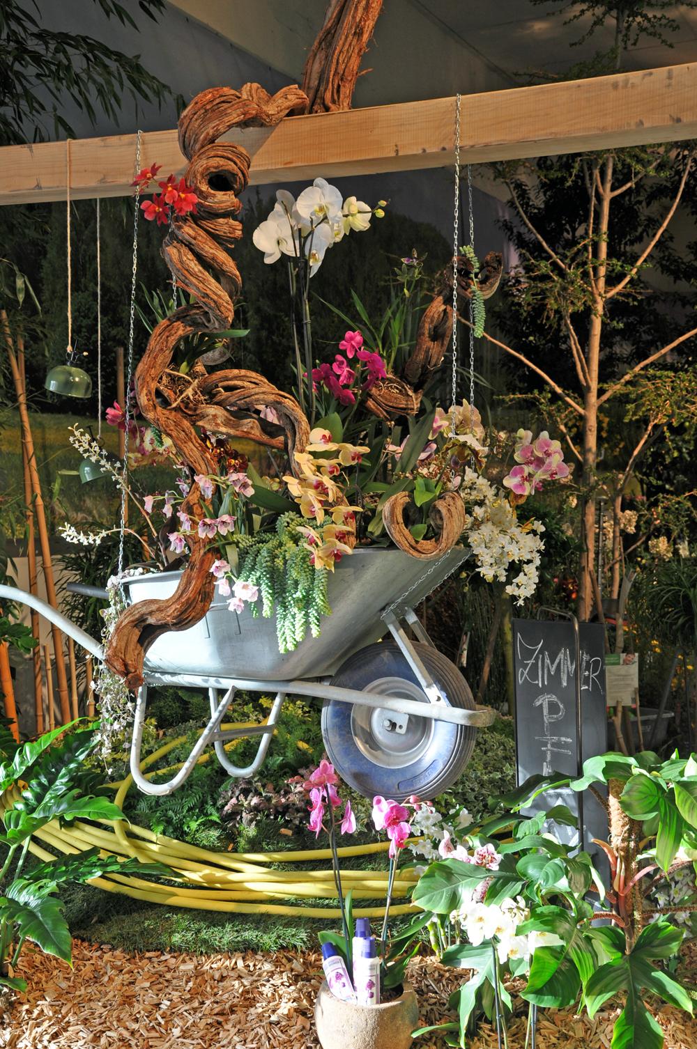 Messe Orchideen